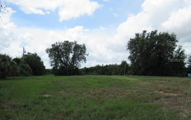 1776 Tindel Camp Road, Lake Wales, FL 33898 (MLS #U8133833) :: Team Bohannon