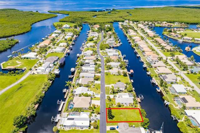 5415 River Bay Drive, Punta Gorda, FL 33950 (MLS #U8133839) :: Premium Properties Real Estate Services
