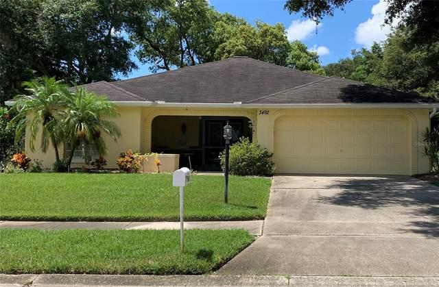 3492 Carmichael Street, Palm Harbor, FL 34684 (MLS #U8134132) :: Cartwright Realty