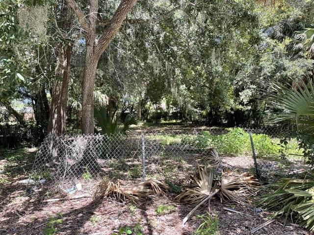 Lime Street, Tarpon Springs, FL 34689 (MLS #U8134256) :: Premium Properties Real Estate Services