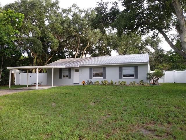 3308 W Van Buren Drive, Tampa, FL 33611 (MLS #U8134298) :: GO Realty