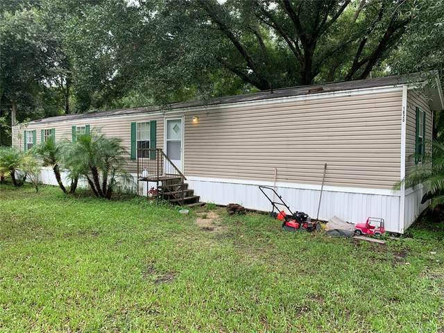 1820 Anna Road, Odessa, FL 33556 (MLS #U8134332) :: Gate Arty & the Group - Keller Williams Realty Smart