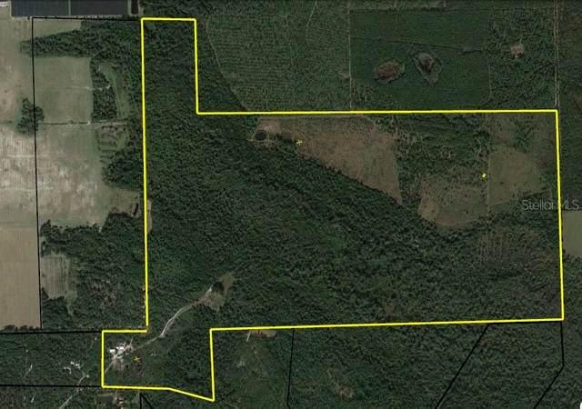 440 Volusian Forest Trail, Pierson, FL 32180 (MLS #U8134411) :: Everlane Realty