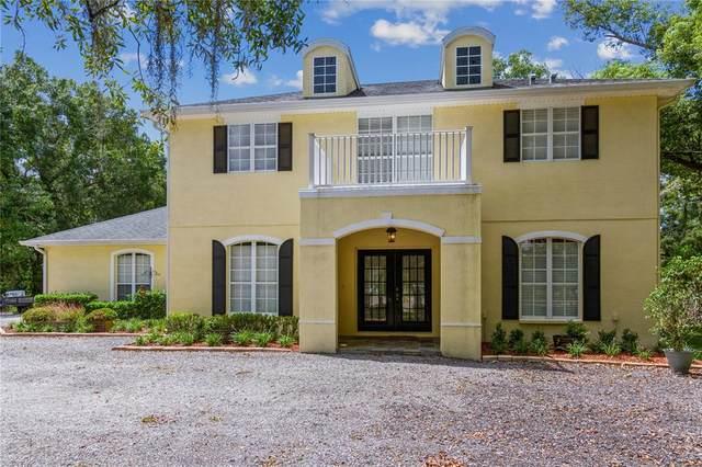 17604 Boy Scout Road, Odessa, FL 33556 (MLS #U8134473) :: Vacasa Real Estate