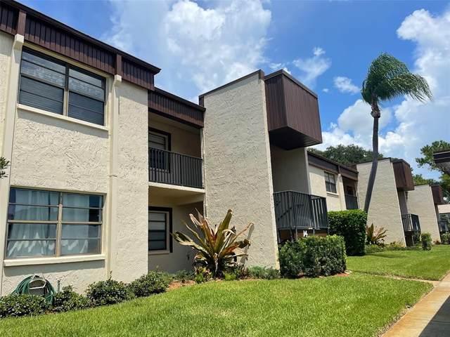 2400 Winding Creek Boulevard 14-104, Clearwater, FL 33761 (MLS #U8134535) :: Team Bohannon