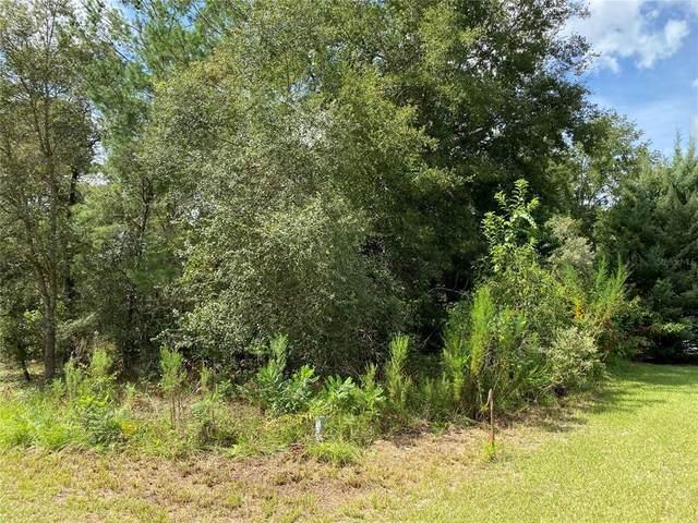 8262 N Ibsen Drive, Citrus Springs, FL 34433 (MLS #U8134592) :: RE/MAX Elite Realty