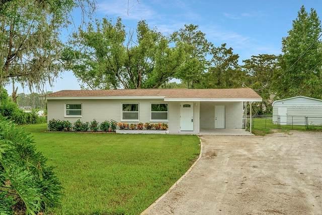 11035 Lake Shore Drive, Land O Lakes, FL 34637 (MLS #U8134636) :: Everlane Realty