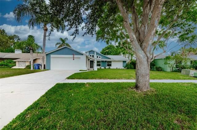 2533 Blossom Lake Drive, Holiday, FL 34691 (MLS #U8134818) :: Pristine Properties