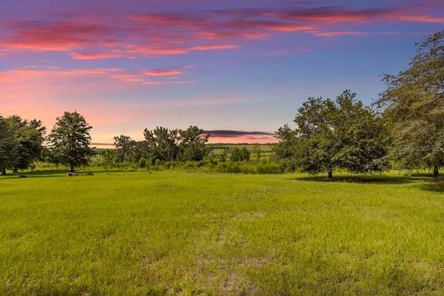 Brooksville, FL 34601 :: Vacasa Real Estate