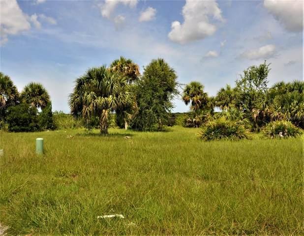 Gulf Way, Hudson, FL 34667 (MLS #U8134940) :: Delgado Home Team at Keller Williams