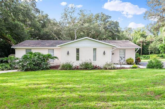 39350 Pretty Pond Road, Zephyrhills, FL 33540 (MLS #U8134996) :: SunCoast Home Experts