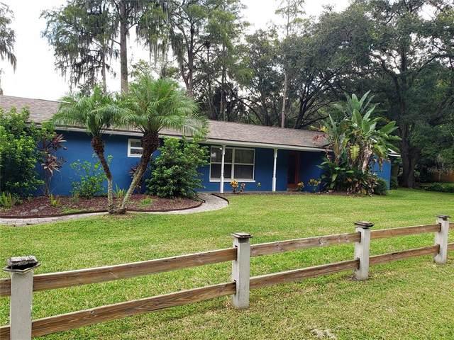 207 Crenshaw Lake Road, Lutz, FL 33548 (MLS #U8135250) :: Zarghami Group
