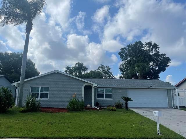 6310 Keller Drive, Port Richey, FL 34668 (MLS #U8135299) :: Zarghami Group