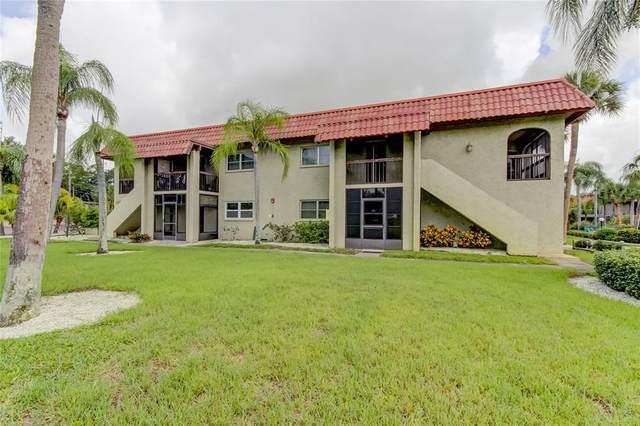 1003 S Bayshore Boulevard #202, Safety Harbor, FL 34695 (MLS #U8135327) :: Future Home Realty