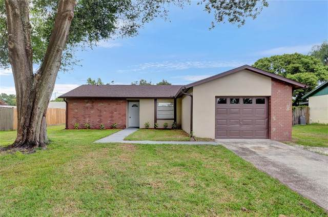 13814 Pathfinder Drive, Tampa, FL 33625 (MLS #U8135391) :: Team Bohannon