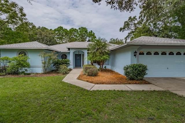 2079 Coachman Road, Spring Hill, FL 34608 (MLS #U8135404) :: Globalwide Realty