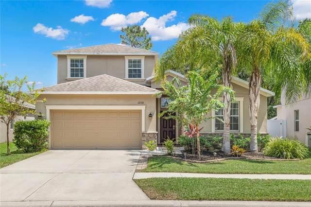 12516 Cricklewood Drive, Spring Hill, FL 34610 (MLS #U8135631) :: Expert Advisors Group