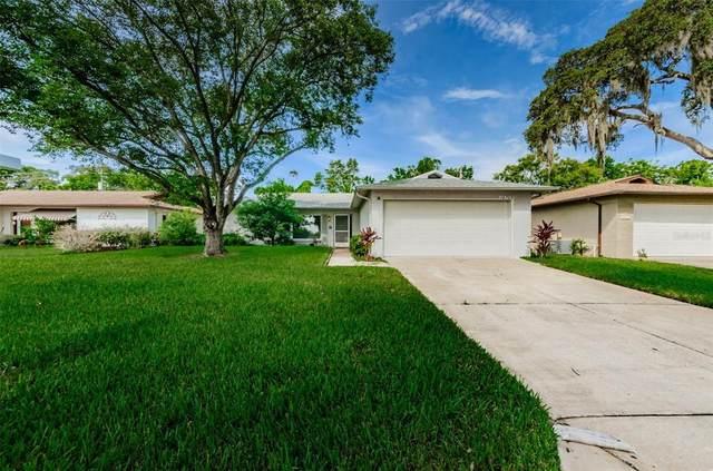 10703 Salamanca Drive, Port Richey, FL 34668 (MLS #U8135688) :: Vacasa Real Estate