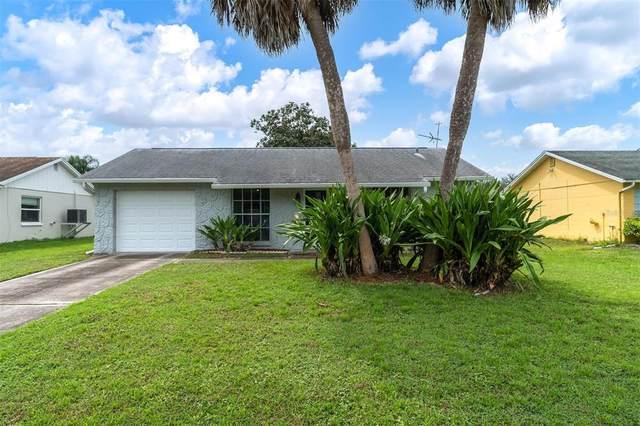 3135 Ludlow Drive, New Port Richey, FL 34655 (MLS #U8135704) :: Zarghami Group