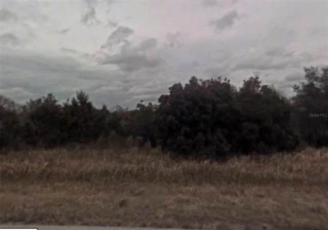 6189 N Buckland Drive, Citrus Springs, FL 34434 (MLS #U8135880) :: Gate Arty & the Group - Keller Williams Realty Smart