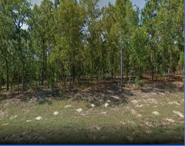 6624 N Bedstrow Boulevard, Citrus Springs, FL 34434 (MLS #U8135895) :: Gate Arty & the Group - Keller Williams Realty Smart