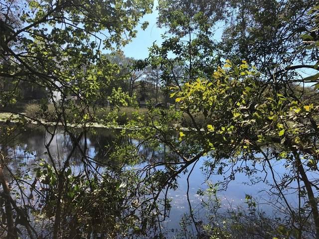 4482 E Islet Court, Hernando, FL 34442 (MLS #U8135921) :: Globalwide Realty