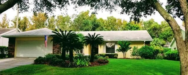 2678 Cobbs Way, Palm Harbor, FL 34684 (MLS #U8135947) :: The Curlings Group