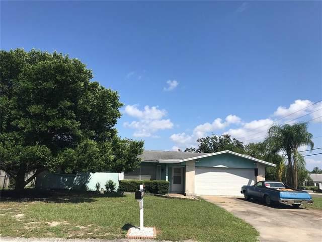 1879 Alberta Drive, Clearwater, FL 33756 (MLS #U8135989) :: Everlane Realty