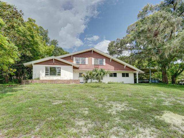 2343 Keystone Road, Tarpon Springs, FL 34688 (MLS #U8136017) :: Vacasa Real Estate