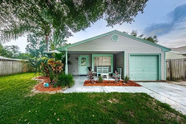 2640 Kavalier Drive, Palm Harbor, FL 34684 (MLS #U8136196) :: Southern Associates Realty LLC