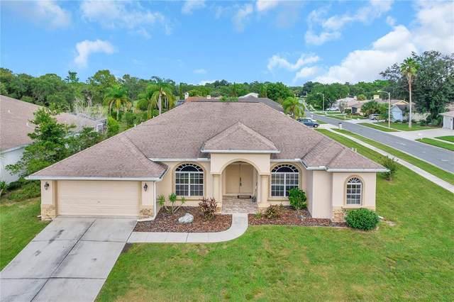 10244 Locker Drive, Spring Hill, FL 34608 (MLS #U8136247) :: Everlane Realty