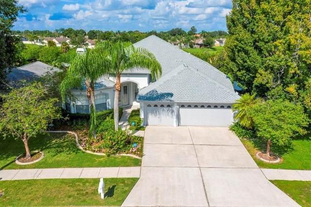 6608 Seafairer Drive, Tampa, FL 33615 (MLS #U8136314) :: Zarghami Group