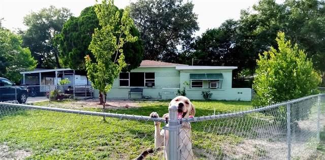 3501 W Cherokee Avenue, Tampa, FL 33611 (MLS #U8136369) :: Zarghami Group