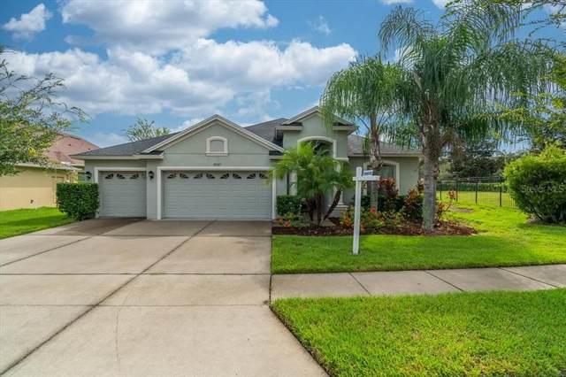 27525 Sora Boulevard, Wesley Chapel, FL 33544 (MLS #U8136401) :: Carmena and Associates Realty Group