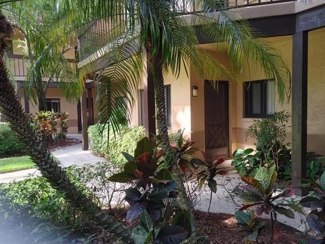 2687 Sabal Springs Circle #104, Clearwater, FL 33761 (MLS #U8136423) :: Zarghami Group