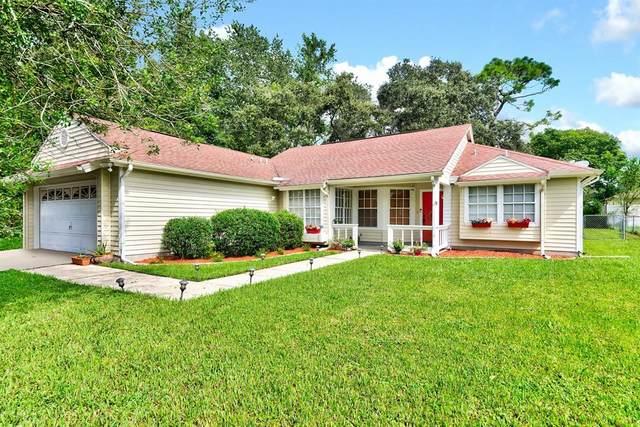 14161 Segovia Street, Spring Hill, FL 34609 (MLS #U8136508) :: Everlane Realty