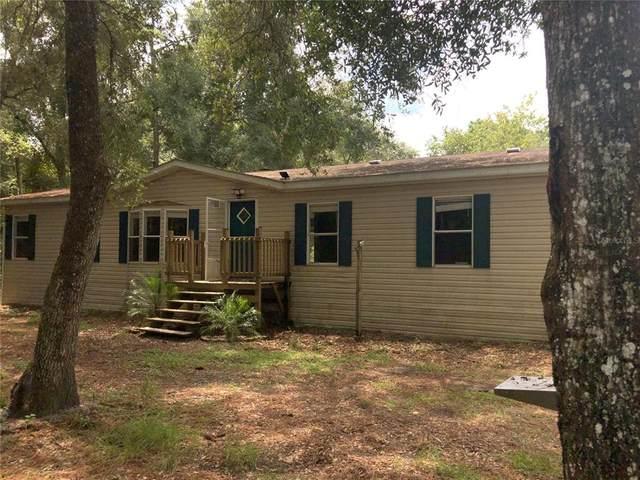 13215 Lucille Drive, Hudson, FL 34669 (MLS #U8136538) :: Baird Realty Group