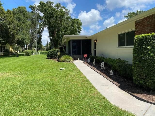 1121 Queen Anne Drive C, Palm Harbor, FL 34684 (MLS #U8136604) :: The Heidi Schrock Team