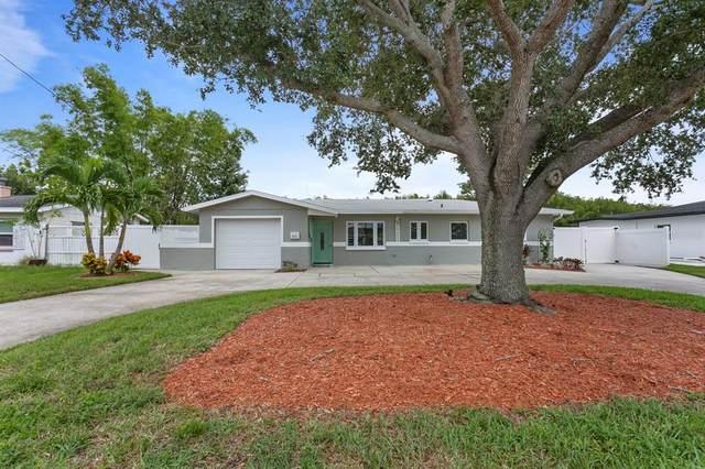 9201 Sun Isle Drive NE, St Petersburg, FL 33702 (MLS #U8136647) :: Everlane Realty