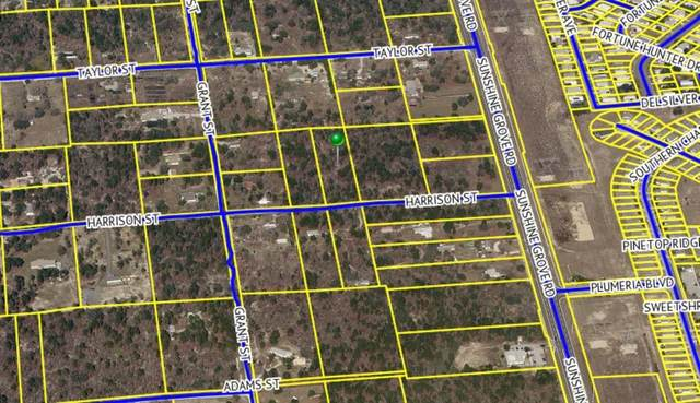 Harrison Street, Brooksville, FL 34613 (MLS #U8136772) :: Zarghami Group