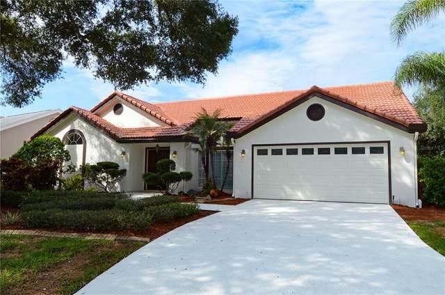 14104 Stonebrook Court, Tampa, FL 33624 (MLS #U8136785) :: Everlane Realty