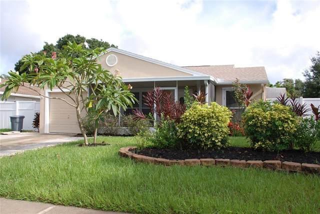 2807 Northcote Drive, Palm Harbor, FL 34684 (MLS #U8136860) :: Zarghami Group