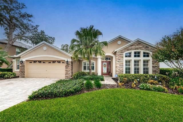 1541 Tawnyberry Court, Trinity, FL 34655 (MLS #U8136861) :: Carmena and Associates Realty Group