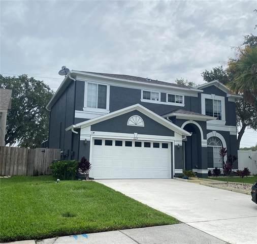 1617 Gray Bark Drive, Oldsmar, FL 34677 (MLS #U8136875) :: Everlane Realty