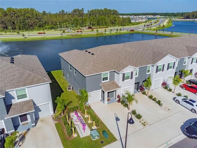 2945 Suncoast Blend Drive, Odessa, FL 33556 (#U8136888) :: Caine Luxury Team