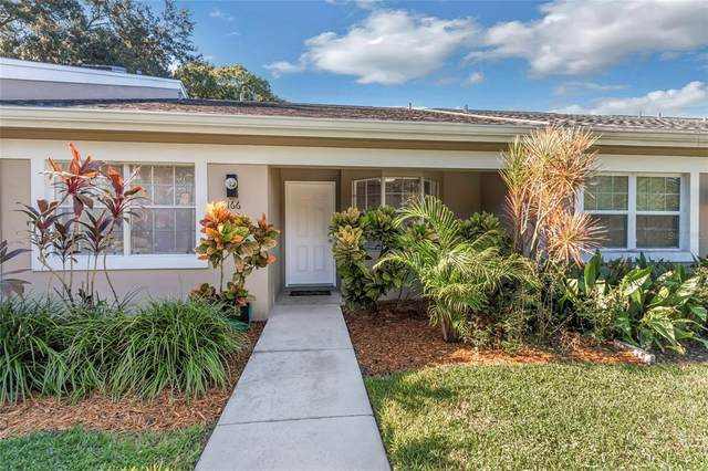 Safety Harbor, FL 34695 :: EXIT King Realty