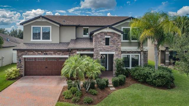 1855 Cameron Court, Trinity, FL 34655 (MLS #U8136963) :: Baird Realty Group