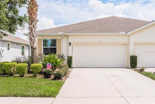 33113 Windelstraw Drive, Wesley Chapel, FL 33545 (MLS #U8136981) :: EXIT King Realty