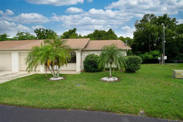 6241 Emerson Drive, New Port Richey, FL 34653 (MLS #U8136995) :: Baird Realty Group