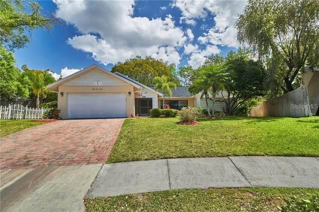 3104 Hillside Lane, Safety Harbor, FL 34695 (MLS #U8137018) :: Zarghami Group